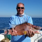 hog snapper fishing
