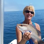 mangrove snapper fishing anna maria