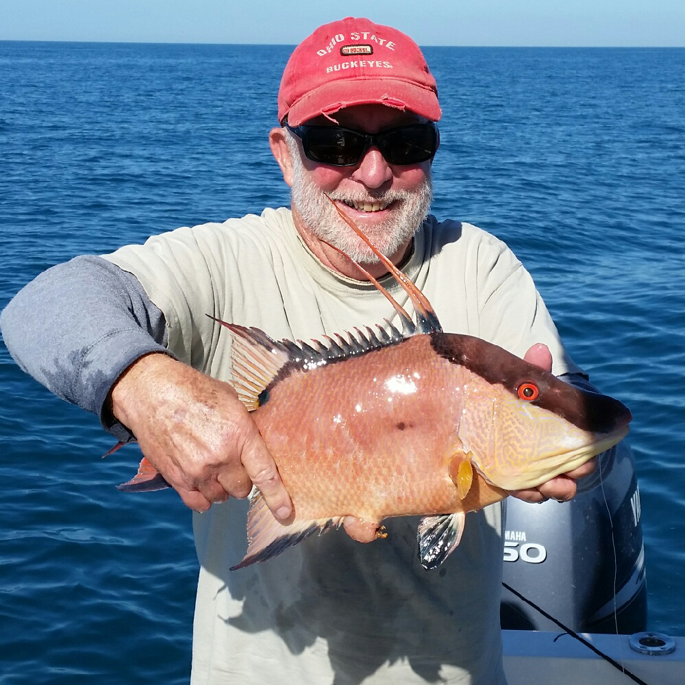 March 2017 monthly fishing report anna maria sportfishing for Anna maria fishing report