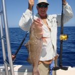 big red grouper