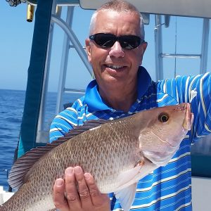 Gulf of Mexico snapper